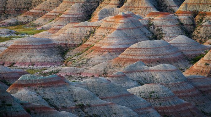 Badlands 2020 Photo Safari