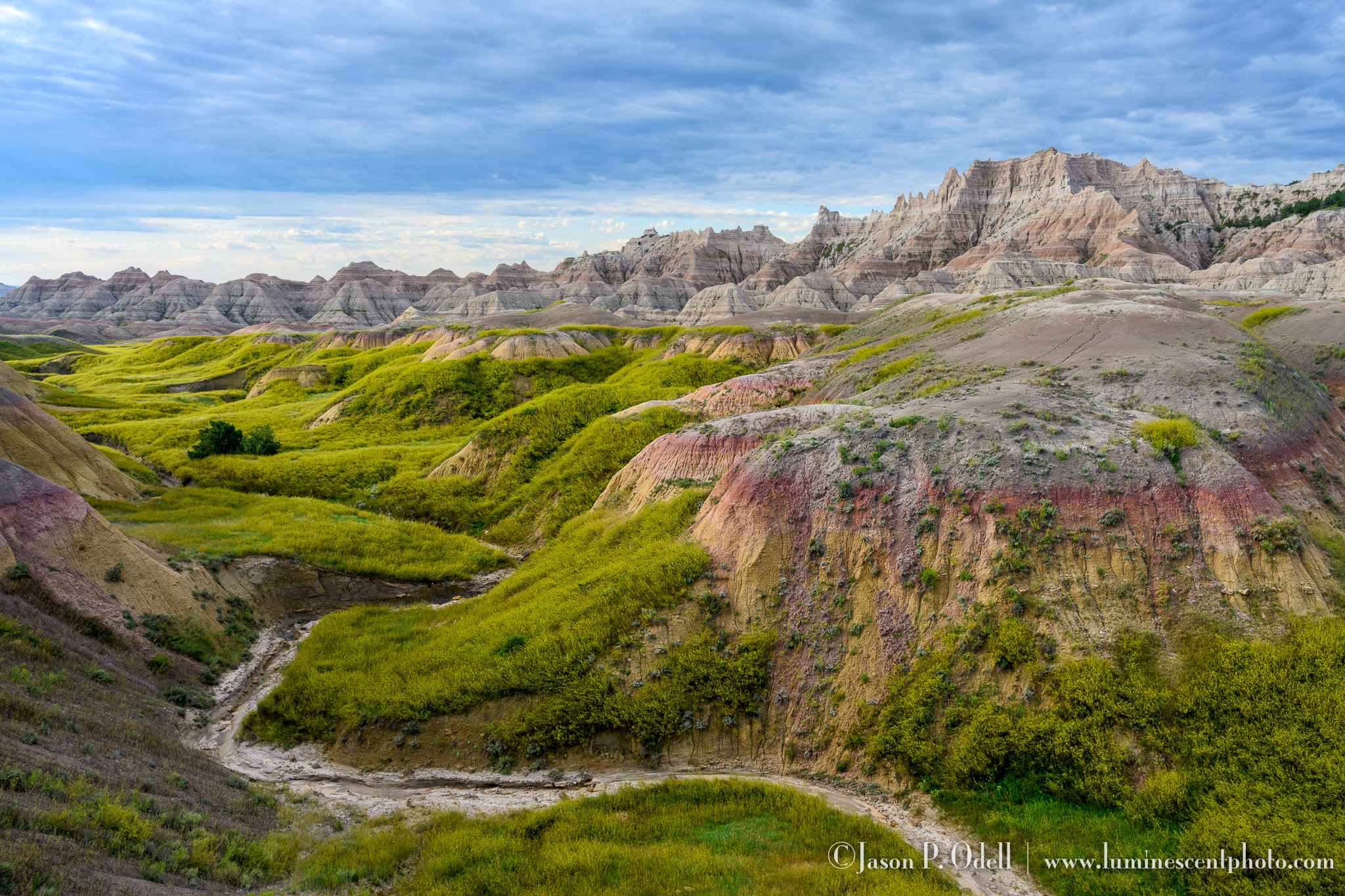 South Dakota Badlands ©Jason P. Odell