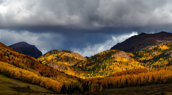 Photographing Fall Colors